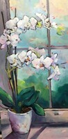 Orchid Dance: Window Dressing Series