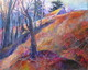 Top of the Morning: Culham Trail, Acrylic, 24x30